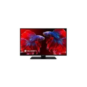 GoGEN TVF 22P406S recenze, cena, návod